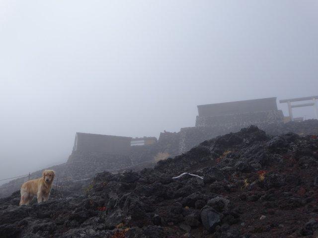 富士山 須走口 犬登山 2015-10-16 235