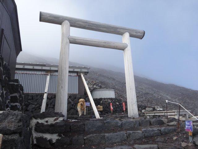 富士山 須走口 犬登山 2015-10-16 238