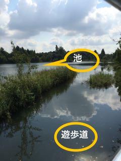 貯水池増水2015.9.13
