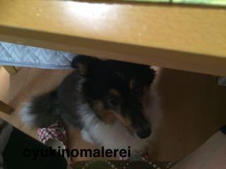 テーブル下に2015.9.30