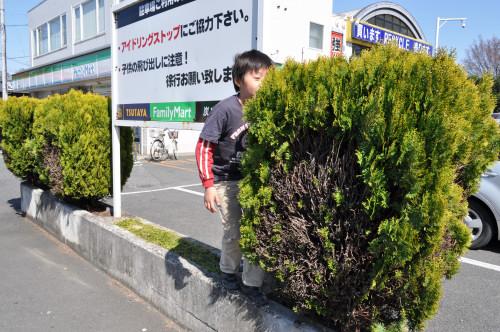 DSC_0007_022.jpg