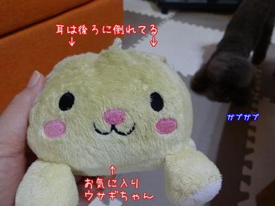 a4dCGM_GOw0JJ7u1443091017_1443091224.jpg