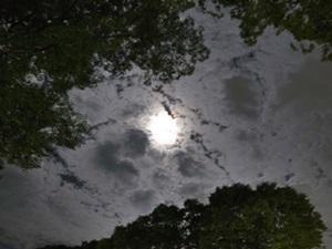 満月②1509