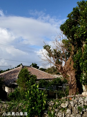 小浜島民家1510