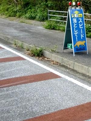 ヤマネコ標識1510