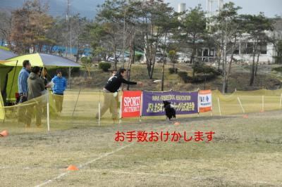 20150321aru_4.jpg