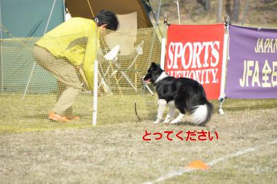 20150321aru_6.jpg