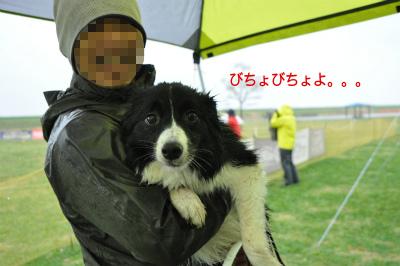 20150405kiso-11.jpg