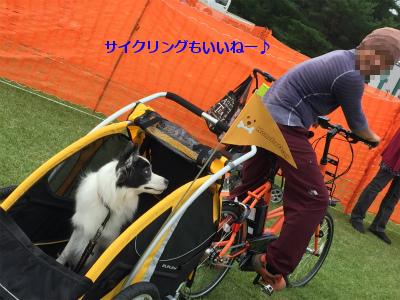 20150913dfy04.jpg