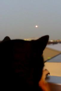 150825_moon.jpg