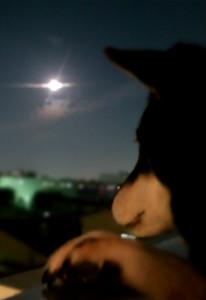 150928_s_moon.jpg