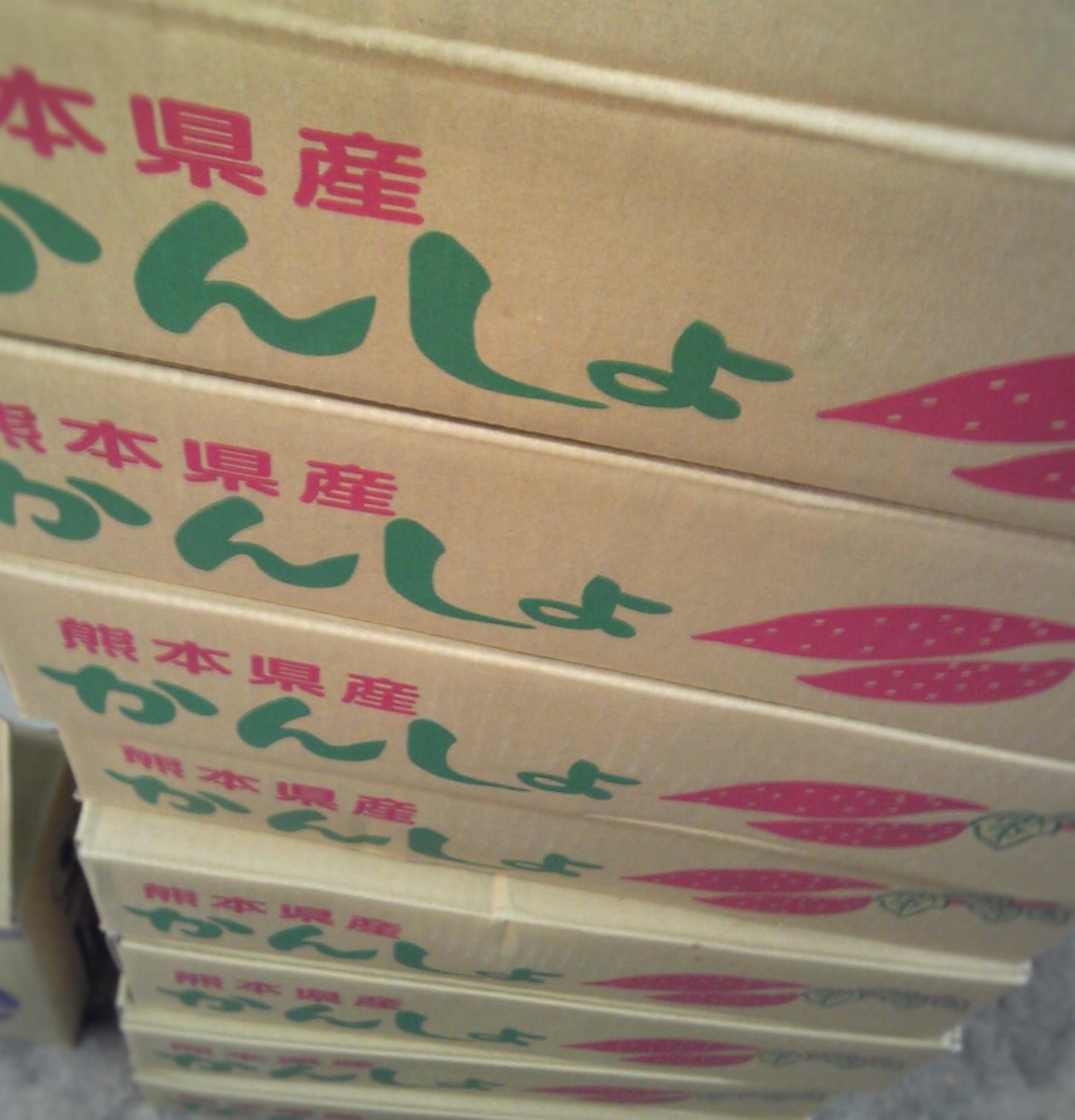 0905唐芋-1