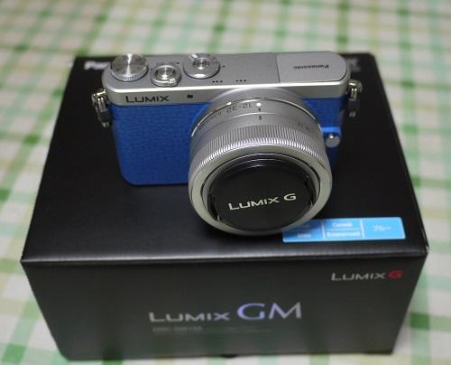 lumixgm1509-001b.jpg