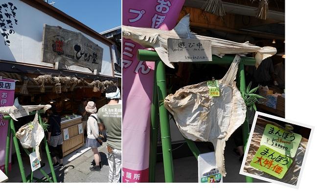 okageyokocyou1509-013b.jpg