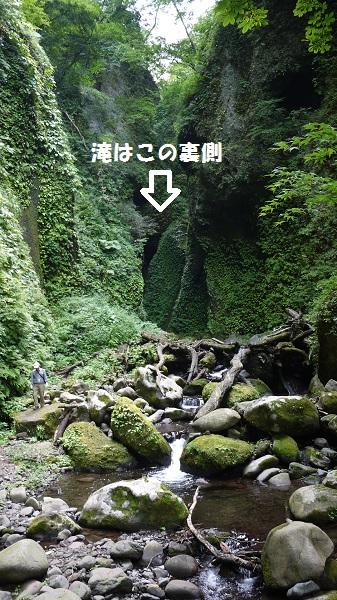 siwagara1508-045b.jpg