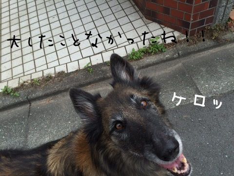 IMG_7857.jpg
