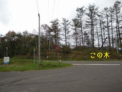 bb20151009-DSCN2700.jpg