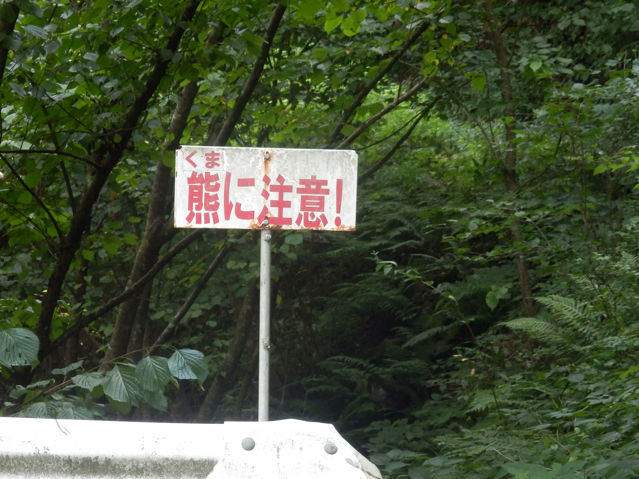 布滝 (6)