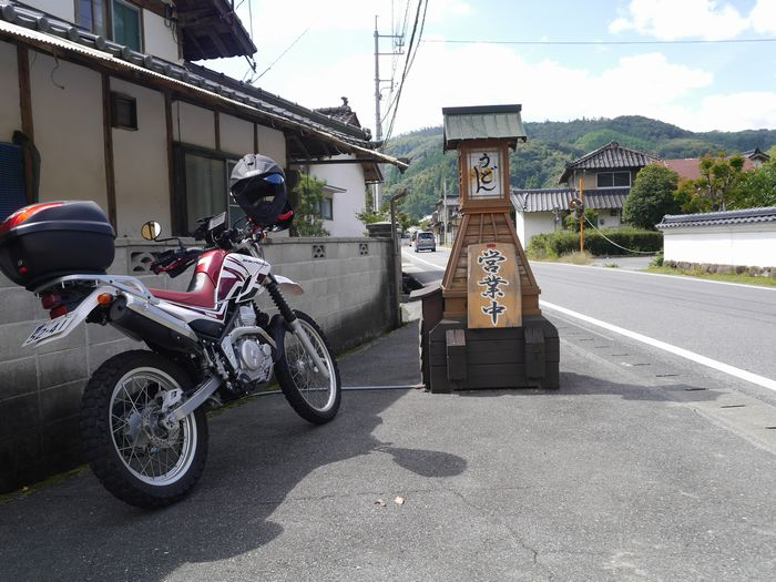 彼岸花、原滝山 (13)