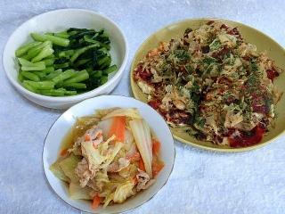 150821_3409お土産の野沢菜・豆腐のお好み焼き風・白菜と豚肉の煮物VGA