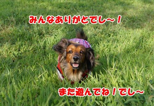 1203_2015101221524185a.jpg