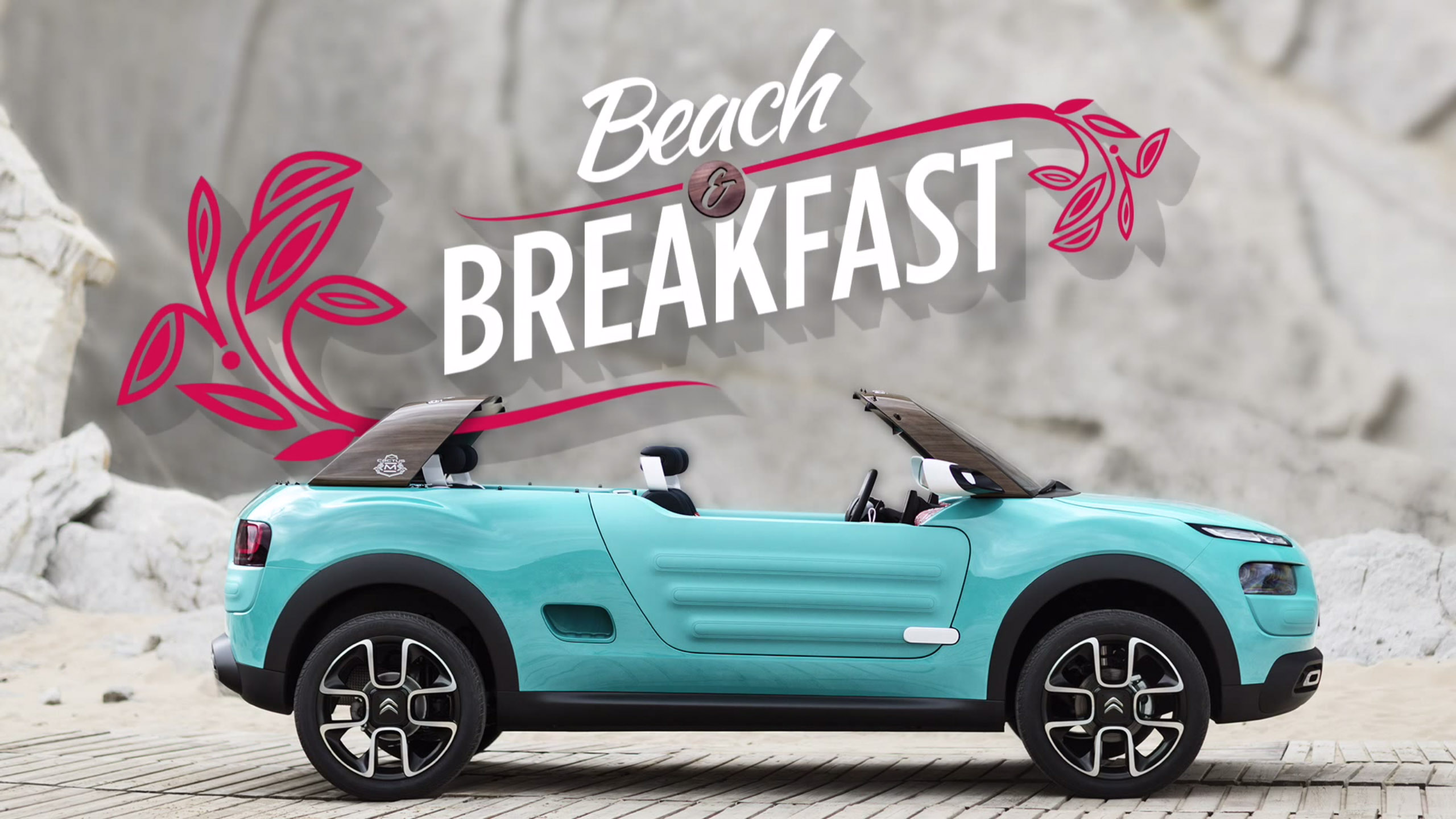 20150915_Citroen Cactus M this is the first motorized BnB