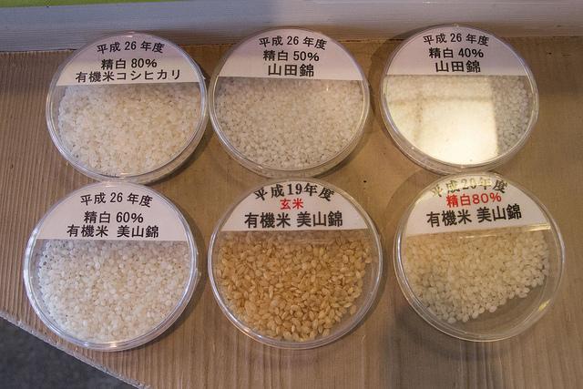 原料米のサンプル。精米するとそれだけ米が小さくなることがわかる