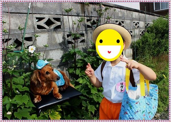 IMG_0087aa_NEW.jpg