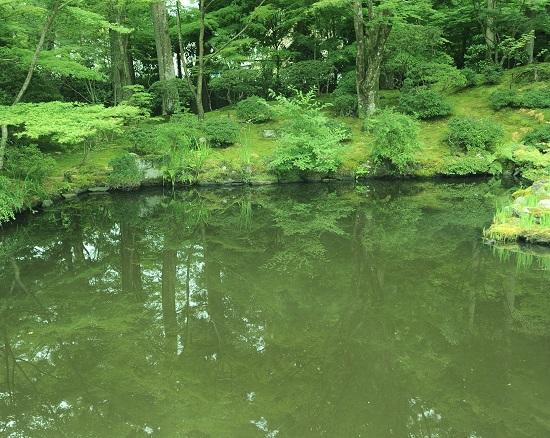 松島海岸にあるお寺円通院