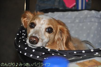 yakitori201509015.jpg