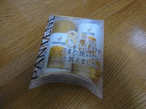 20141003 パンテーン (1)