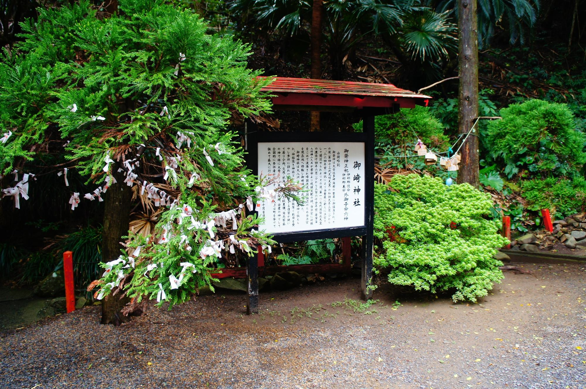 kagoshima_voyage_2015_DSC01229.jpg