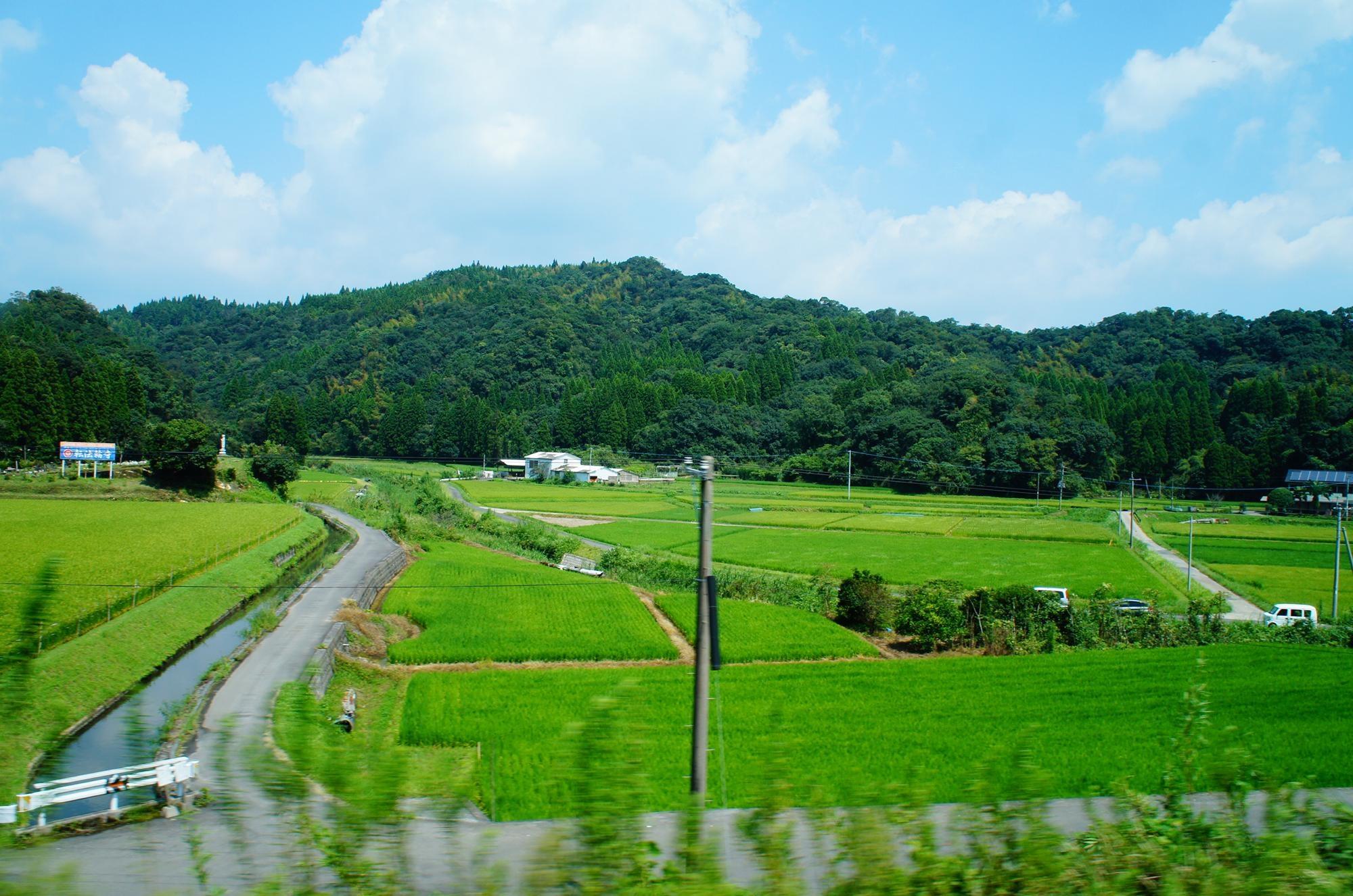 kagoshima_voyage_2015_DSC01289.jpg
