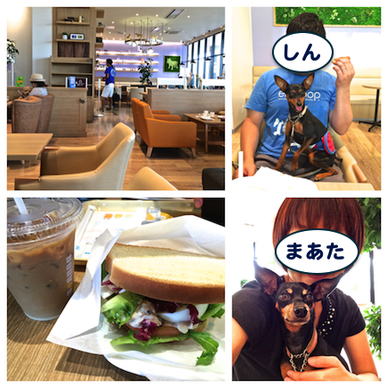 20150825-5.png