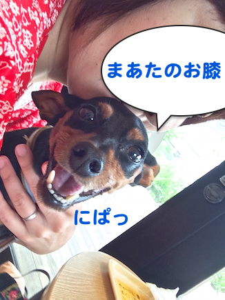 20150907-3.png