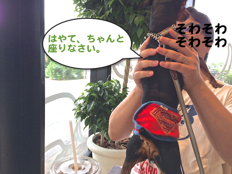 20150907-5.png