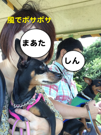 20150914-8.png