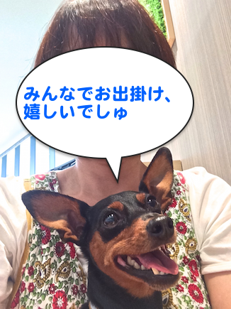 20150922-3.png