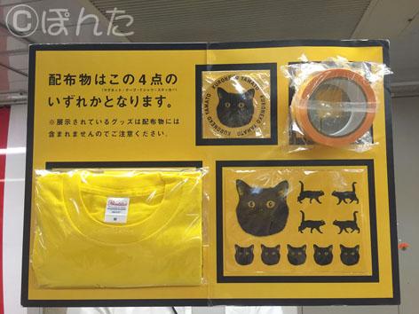 黒猫イベント_3