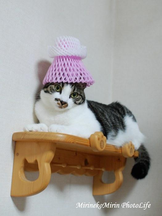 20150829ココネット帽子