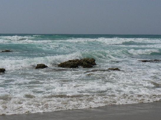 1906琴が浜3