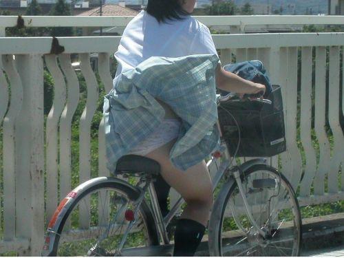 【盗撮画像】ミニスカの女子高生が自転車に乗ってるとパンチラしちゃうよね 39枚 No.3