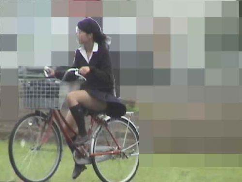 【盗撮画像】ミニスカJKが自転車通学すると当然パンチラしまくるよな 41枚 No.8