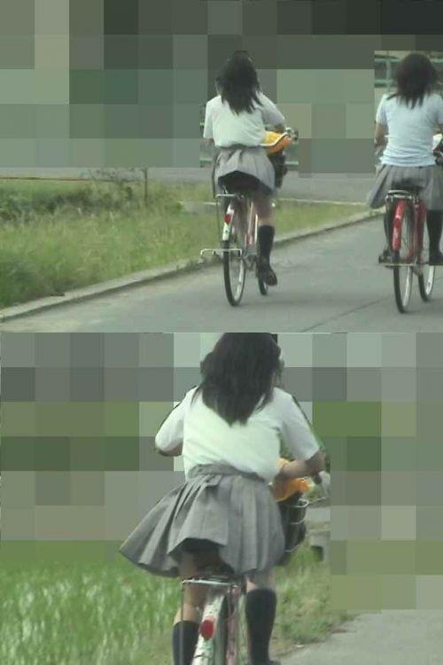 【盗撮画像】ミニスカJKが自転車通学すると当然パンチラしまくるよな 41枚 No.12