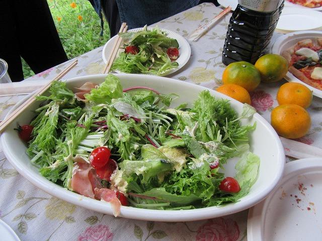 サラダ、前の畑から野菜いっぱい 27.10.4