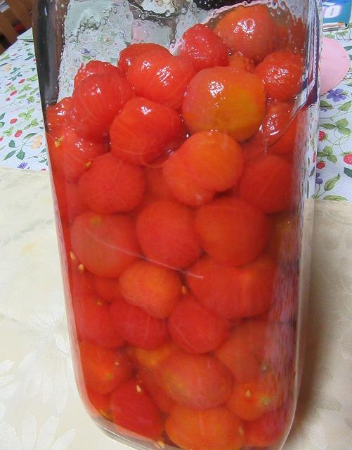 ミニトマトは浸けました 27.10.23