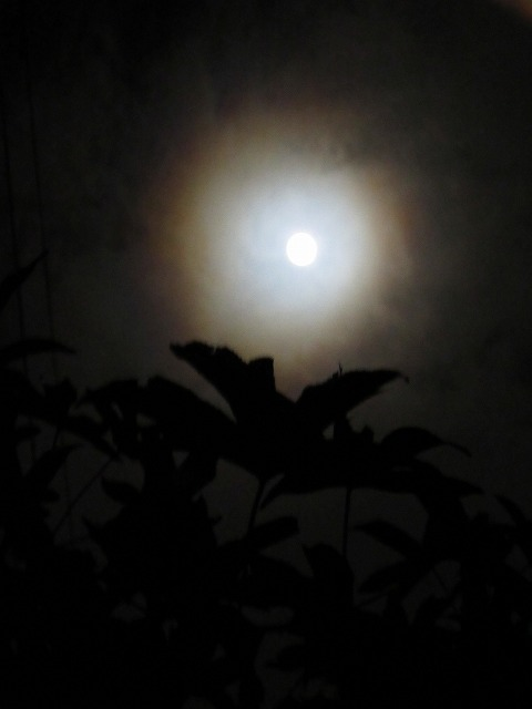 明るいお月様 27.9.28