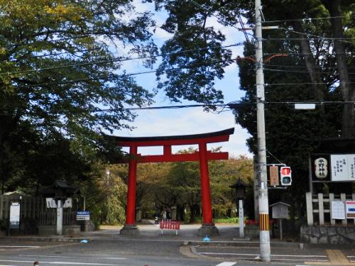 平野神社 (11)_resized