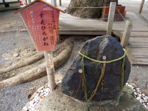 平野神社 (2)_resized