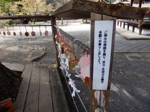 平野神社 (3)_resized